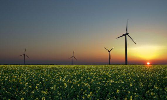 Duurzame Energie Unie